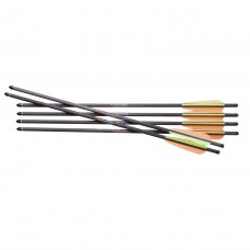 CROSSBOW BOLTS CenterPoint  , Carbon, 20""